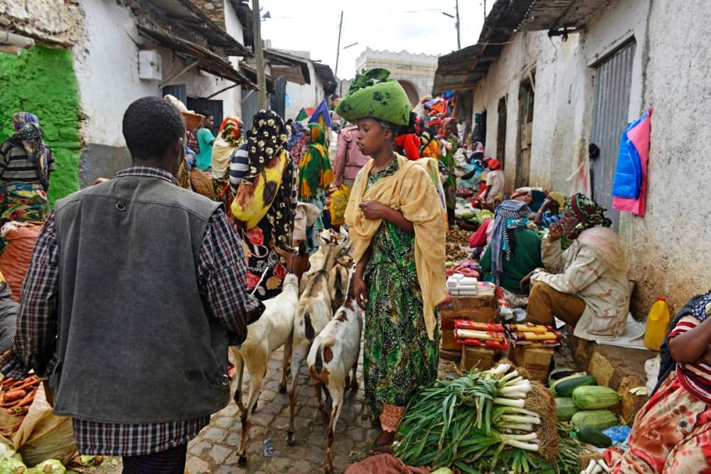 Marked i Harar Jugol i Etiopia