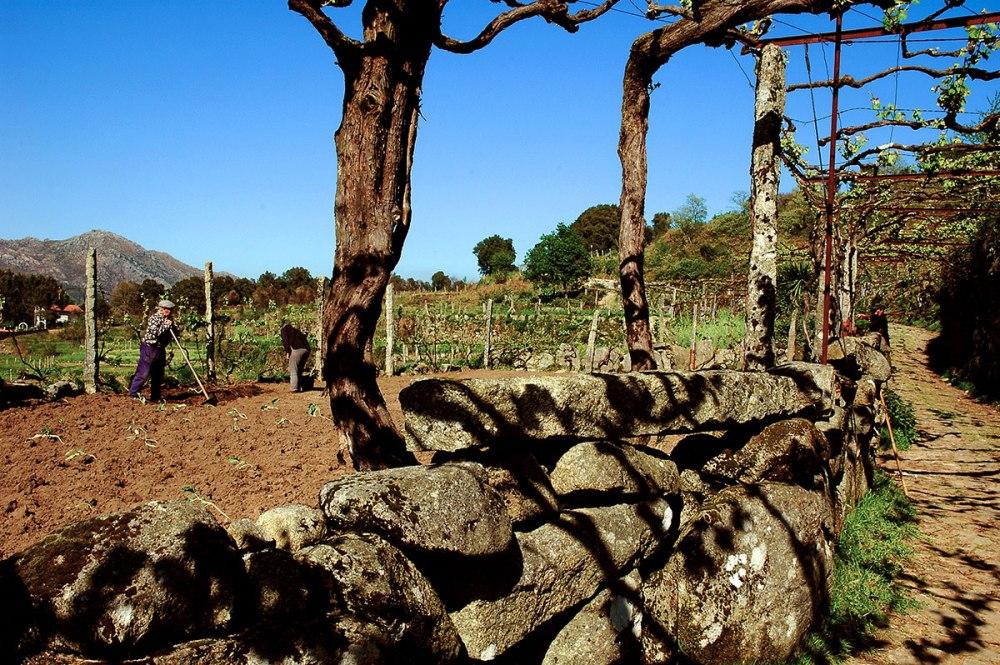 Landsbyliv i Portugal