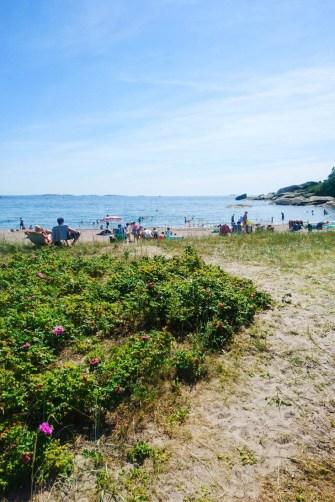 Storestranda på Ula langs Vestfold-kysten
