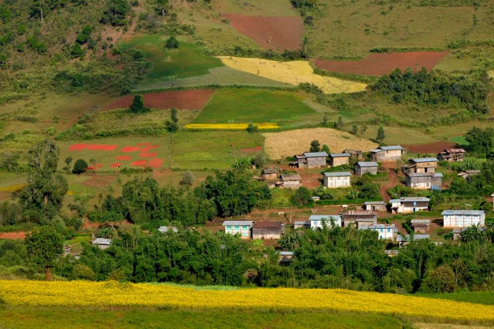 Åkerlapper overfor en landsby sør for Kalaw i Myanmar