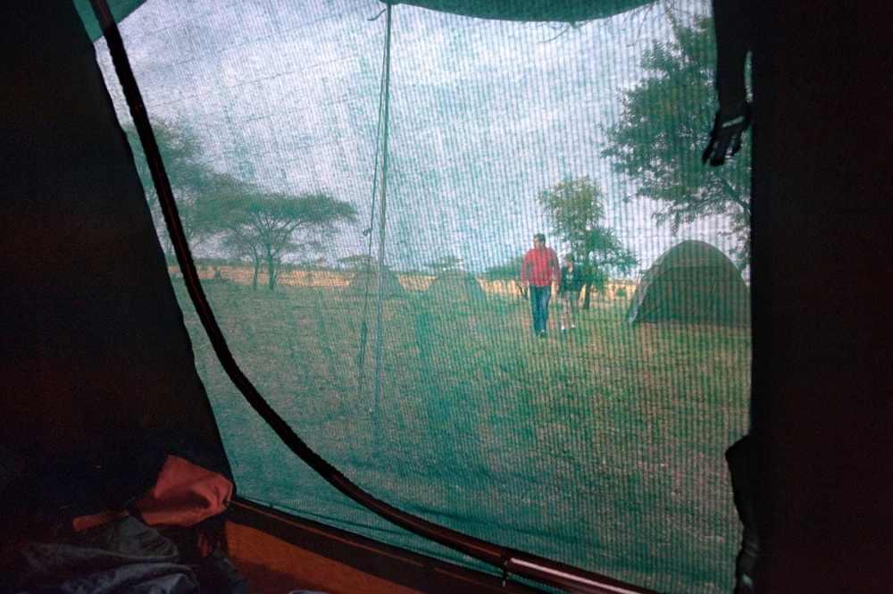safari-telt