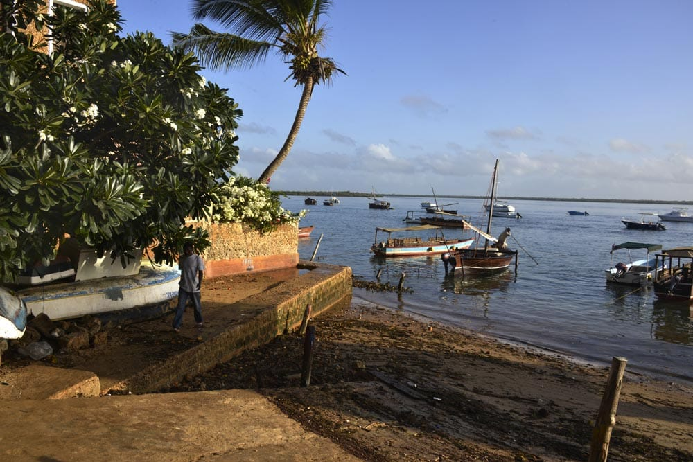 Langs havna i Shela på Lamu i Kenya