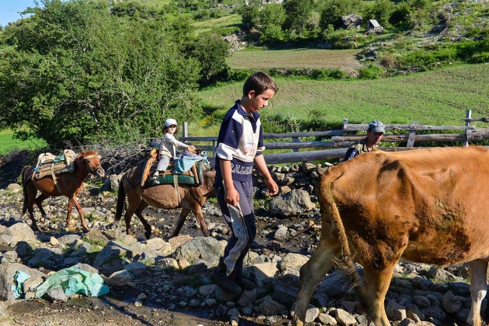 lita jente på hesteryggen i grabova