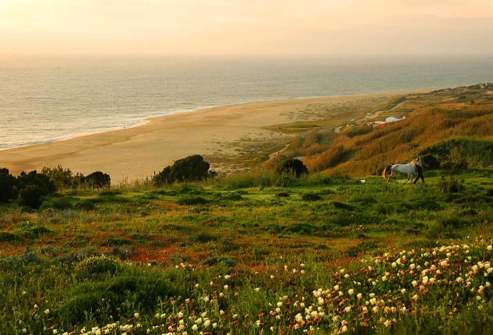 Praia do Norte i Nazaré på våren