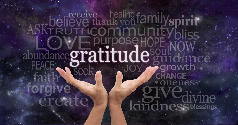 A Board Exercise in Gratitude