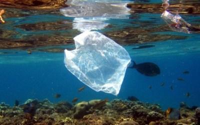 Weniger Plastik-Müll