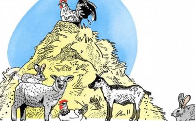 """أمثال ألمانية شائعة مع الشرح واللفظ """"الحيوانات الصغيرة يصدر عنها الروث أيضاً"""""""