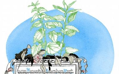 """أمثال ألمانية شائعة مع الشرح واللفظ """"الأعشاب الضارة لا تتلاشى"""""""