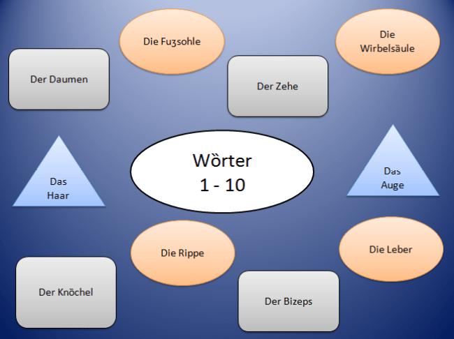3 300x224 - Wörter (11-20)
