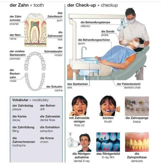 66704803 322416652002061 1482098741748957184 n 1 293x300 - der Zahn ;der Check-up