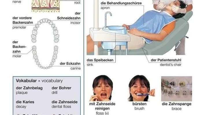 66704803 322416652002061 1482098741748957184 n 1 - der Zahn ;der Check-up