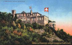 Baden, Schloss Schartenfels