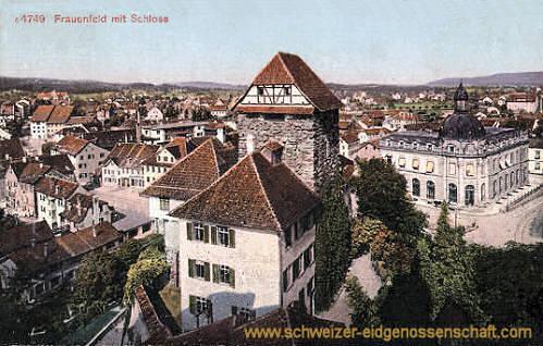 Frauenfeld mit Schloss
