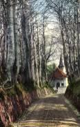 Küssnacht am Rigi, Hohle Gasse mit Tells Kapelle