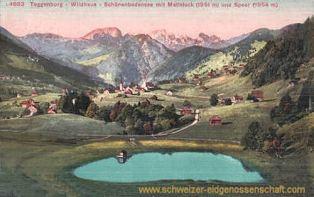 Toggenburg, Wildhaus