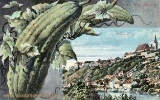 Znaim, Carolinenberg