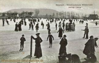 Neustadt (Herzogtum Coburg), Waldfriedensee Wildenheid