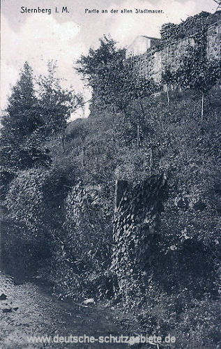 Sternberg in Mecklenburg, Stadtmauer