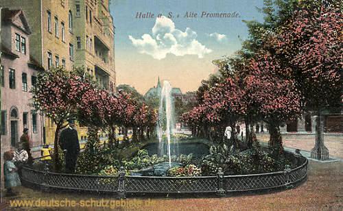 Halle, Alte Promenade