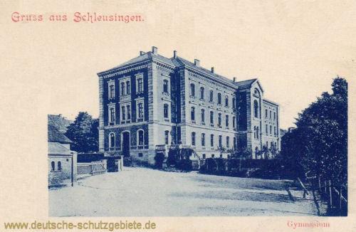 Schleusingen, Gymnasium
