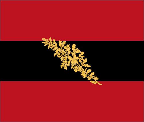 Jenaer Burschenschaft, Flagge