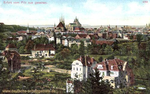 Erfurt vom Pilz aus gesehen