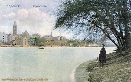 Köpenick, Panorama