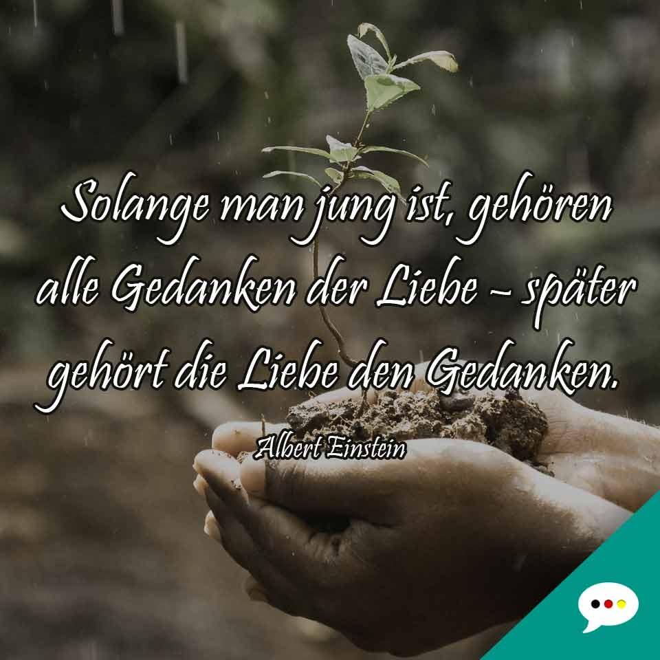 Intelligente und weise Spruchbilder  Deutsche Sprche XXL