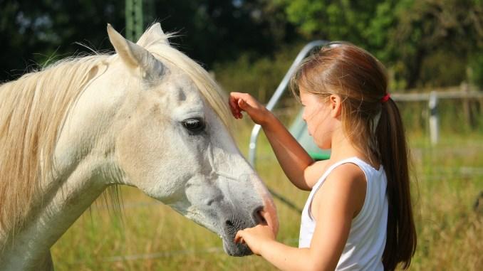 Maedchen mit Pferd
