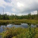 Parc de la Gatineau, Outaouais