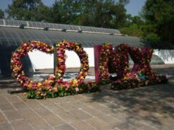 Emblème de la ville - Jardin botanico de Chapultepec