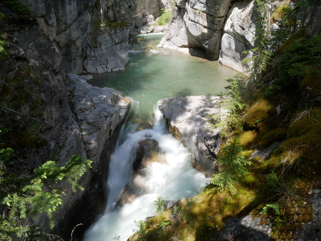 Canyon Maligne