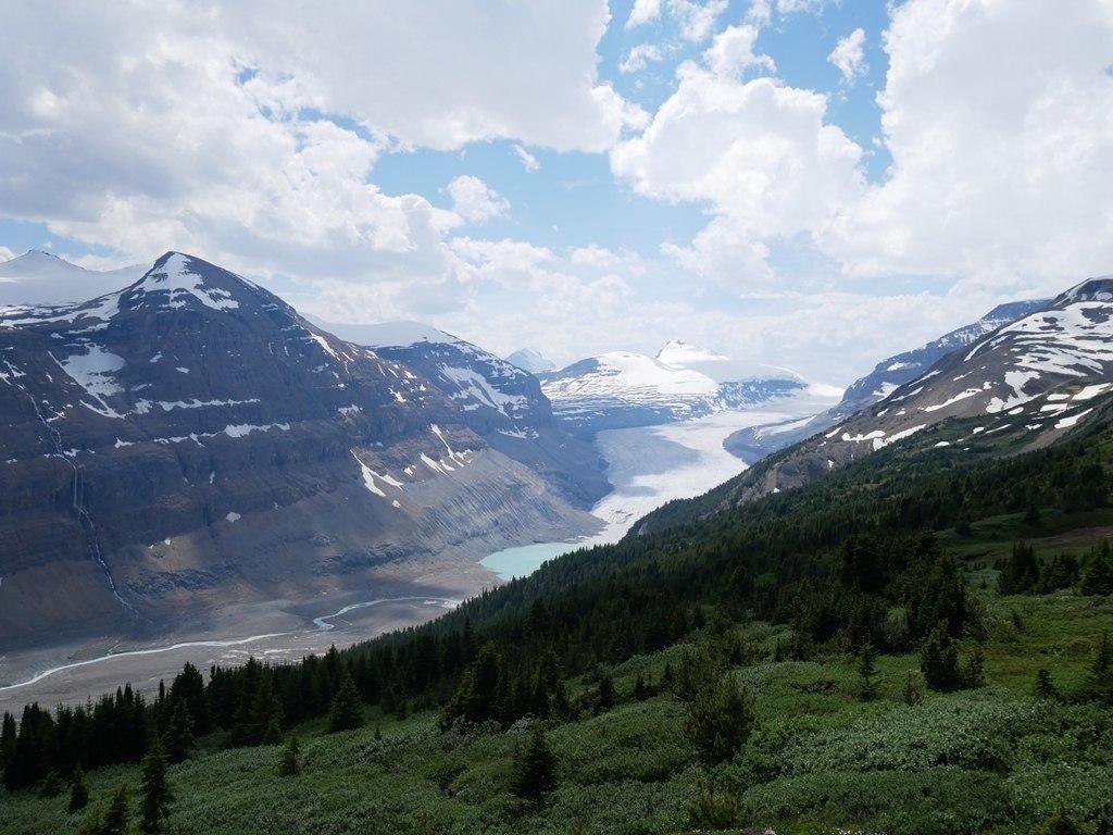 Glacier et rivière Saskatchewan à Banff
