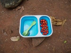 Tomates cerises ramassé sur le Kalalau trail