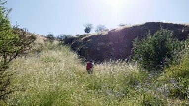 Randonnée Cerro Colorado (1)