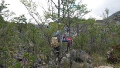 Trekking Exploradores Phase dans la forêt