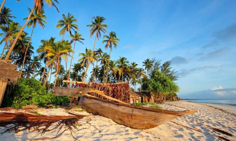 L'arbre et la pirogue, histoire de l'archipel du vanuatu - Dev-Perso