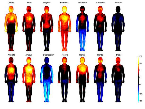 Température du corps en fonction de l'émotion