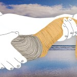 The Shoreline Still Provides Dinner, Despite Climate Change and Private Property