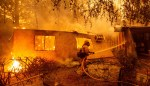 How My Settler Ancestors Set Us Up for Uncontrollable Wildfires