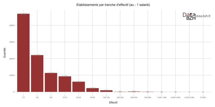 Etablissements par tranche d'effectif (au - 1 salarié)