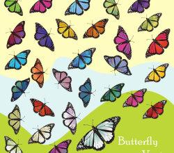 Butterfly Free Vector Art