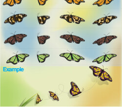 Butterfly Free Illustrator Vector Pack
