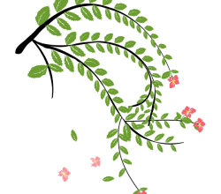 Hibiscus Flower Plant Vector Art