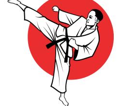 Vector Karate Fighter Image
