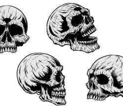 Vector Clip Art Skulls
