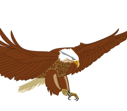 Flying American Eagle Vector Art
