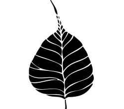 Vector Bodhi Leaf
