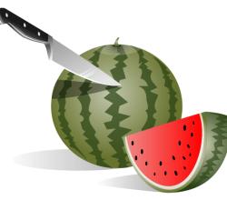 Watermelon Vector Free
