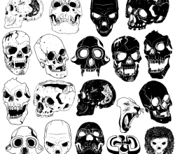 Free Skull Vector Images